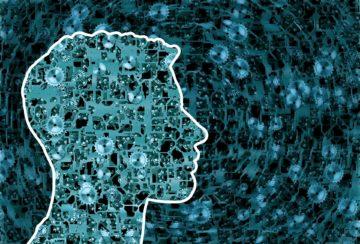 Формула сознания: зрим в корень