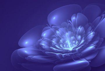 Высшее состояние сознания. Как достигнуть?
