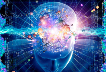 GSR. Perfect mind или Мурашинная теория — 2
